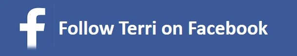 Facebook Website Follow Button 2